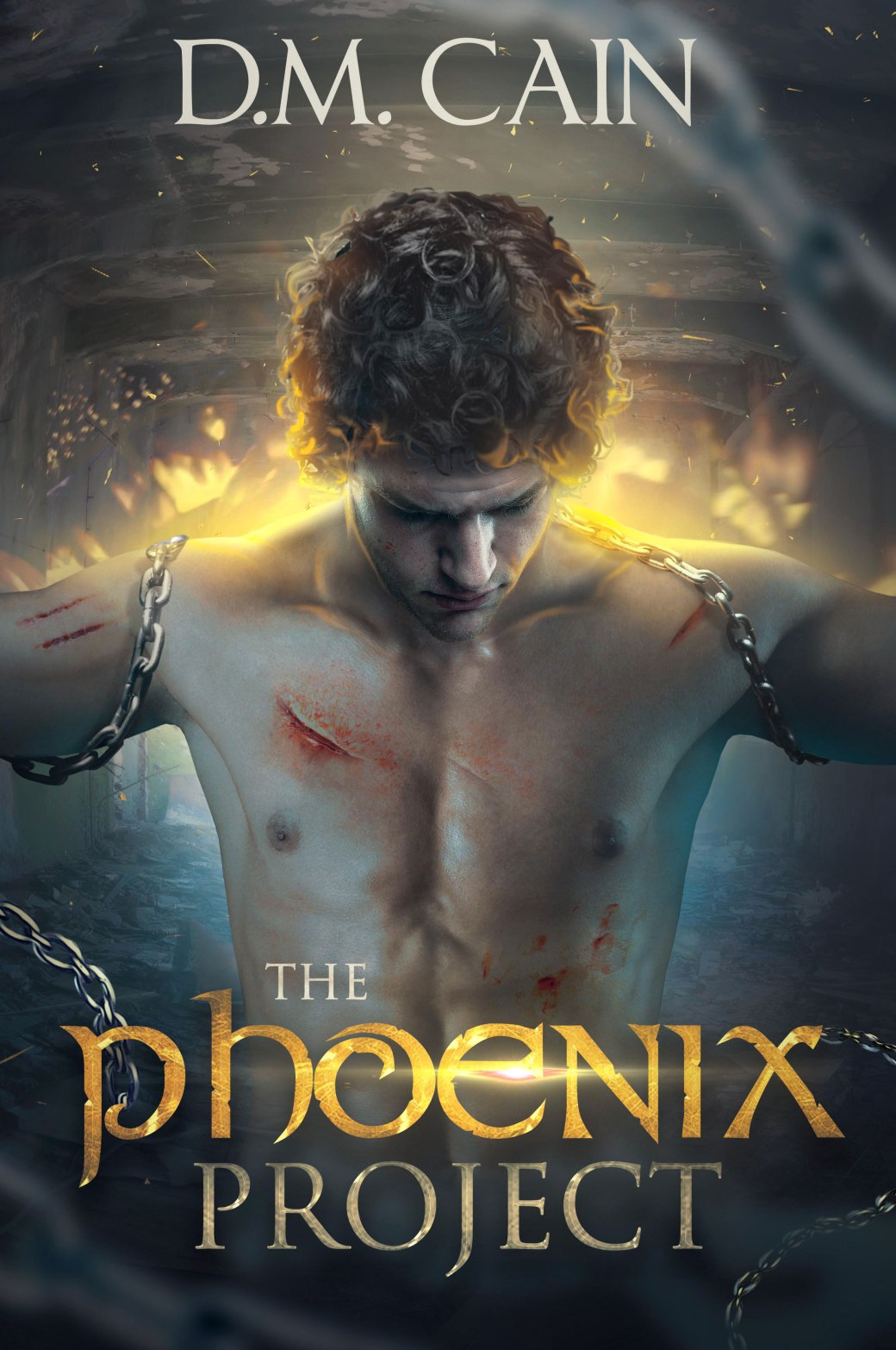 The Phoenix Project Cover - Booktrope.jpg